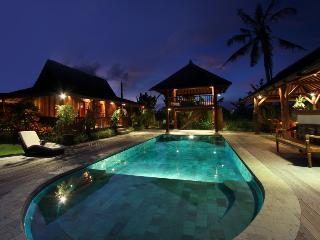 Peaceful Spacious Villa Canggu - Canggu vacation rentals