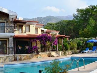 Estates Turkey Holiday Villa - Oludeniz vacation rentals