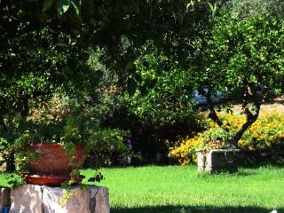 Agriturismo Borgo Levante - Giallo 4 posti - Catania vacation rentals