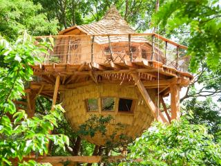 Loire Valley Cabane du Verger treehouse with SPA - Azay-le-Rideau vacation rentals