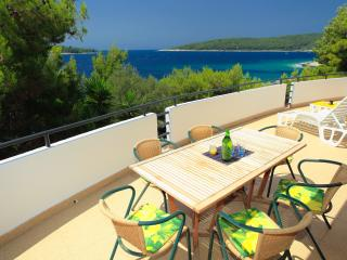 BEACHFRONT apartment on Korcula - bright, spacious - Blato vacation rentals