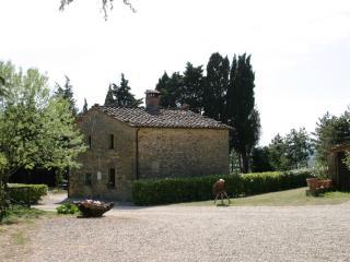 Guardia, relax in rural farmhouse near Anghiari - Anghiari vacation rentals