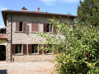 Villa in rural farm,near Anghiari, nature leisure - Anghiari vacation rentals