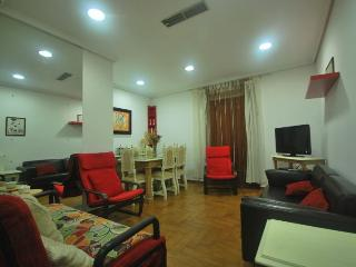 Apartment in Córdoba 100324 - Cordova vacation rentals