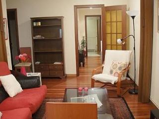 2 bedroom Apartment with Television in Santiago de Compostela - Santiago de Compostela vacation rentals