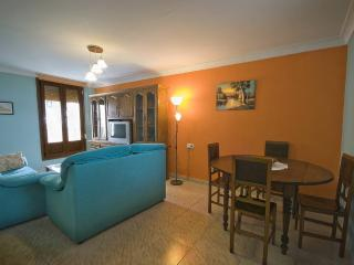 House in Sesma, Navarra 100060 - Navarra vacation rentals