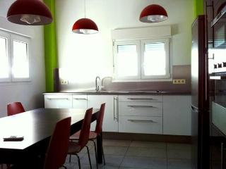 House in Conil de la Frontera, Cadiz 100939 - Conil de la Frontera vacation rentals