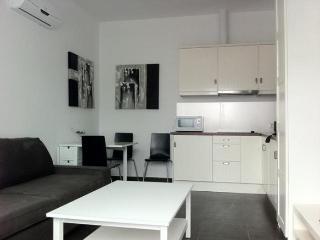 Apartment in Conil de la Frontera 100943 - Conil de la Frontera vacation rentals