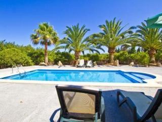 Villa in Sa Pobla, Mallorca 101100 - Sa Pobla vacation rentals