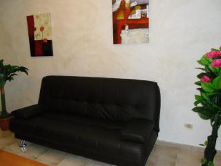 Apartment In Santa Cruz de Tenerife 101462 - Santa Cruz de Tenerife vacation rentals