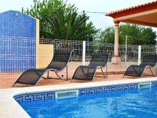 Villa en Algarve, Portugal 101480 - Algoz vacation rentals