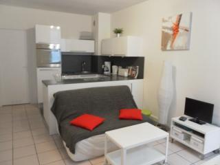 Appt T2 Bis Hyper centre Cauterets - Cauterets vacation rentals