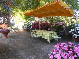 1 bedroom Farmhouse Barn with Deck in Greve in Chianti - Greve in Chianti vacation rentals