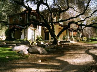 The River's Edge : DaVidgil House - Three Rivers vacation rentals
