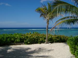 Azure Breeze #3 - Bodden Town vacation rentals