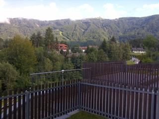 Apartment in Brunek - Riscone - Riscone vacation rentals