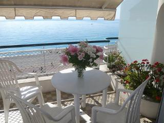 La Floride ~ RA29283 - Nice vacation rentals