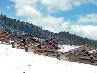 Apartment, Châtel ~ RA28060 - Chatel vacation rentals