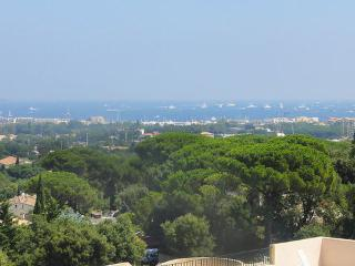 Les Terrasses St Tropez Vacation Rental with a Balcony and Pool - Saint-Tropez vacation rentals