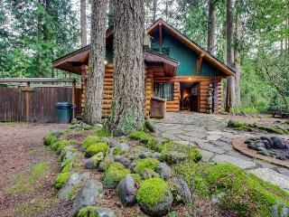 Zoe's Log Cabin - Rhododendron vacation rentals