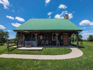 A Great Cabin For Families. - South Bloomingville vacation rentals