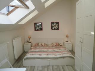 Bright Studio with Internet Access and Television - Prague vacation rentals