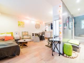 Passage des Cloys Vacation Rental in Montmartre - Paris vacation rentals