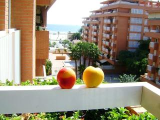 La Vista del Mar - Valencia vacation rentals