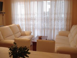 Comfortable, south-faceing 2-bedrooms apartment - Crikvenica vacation rentals