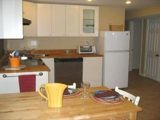 Apartment Near NIH and Bethesda Naval Hospital - Capital Region vacation rentals