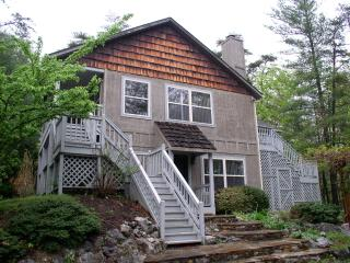 Mountain Chalet with Wi-Fi, Pet Friendly, Firepit - Basye vacation rentals
