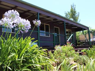 Serendipity Cottage - Wentworth Falls vacation rentals
