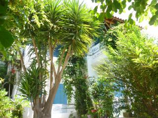 Perfect Condo with Internet Access and Garden - Marathokampos vacation rentals