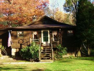 Beechwood Cottage Ligonier - Seven Springs vacation rentals