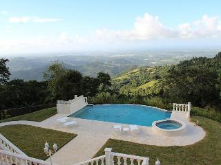 Best Ocean View Mountain Villa in the Caribbean - Canovanas vacation rentals