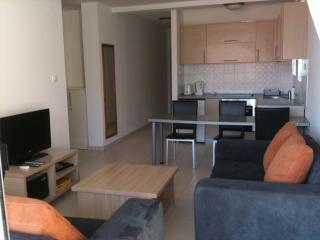 Bright 2 bedroom Condo in Becici - Becici vacation rentals