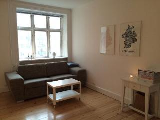Bright refurbished Copenhagen apartment at cosy Amager - Copenhagen vacation rentals