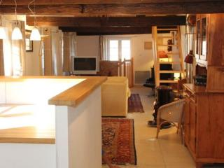 Nice Gite with Internet Access and Dishwasher - Schnersheim vacation rentals
