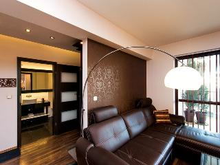 Modern Luxury Riverside Apartment- very Central - Krakow vacation rentals