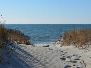 Cape Cod cottage just steps from private ocean beach! - West Dennis vacation rentals