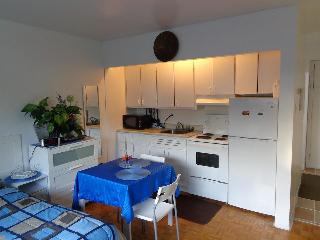 Conveniently Located Bachelor Apt - Ottawa vacation rentals