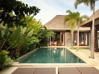 Mahagiri, Luxury 1/2 BR Villas, Central Sanur - Sanur vacation rentals