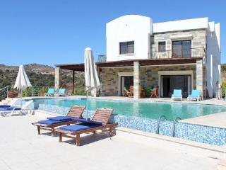 Perfect 4 bedroom Mugla Villa with Dishwasher - Mugla vacation rentals