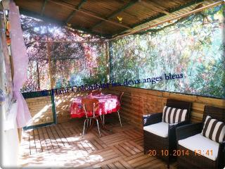 Haut Colombier les deux anges bleus - Saint-Roman-de-Malegarde vacation rentals