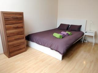 Lill apartment - Ljubljana vacation rentals