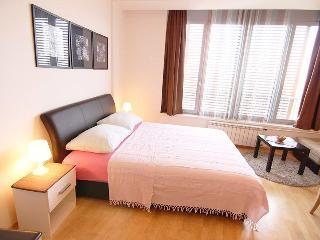 Bright DOWNTOWN Studio → Cozy & Functional! - Belgrade vacation rentals