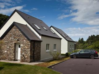 Bright 3 bedroom Castletownbere Lodge with Satellite Or Cable TV - Castletownbere vacation rentals