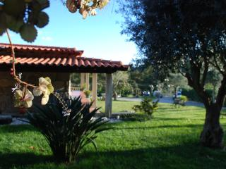 CASA SEQUEIRÔ..onde o amor acontece - Vila Verde vacation rentals