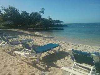 Starfish Paradise,on the beach, Sea view, Interne - Negril vacation rentals