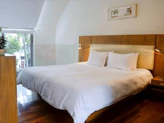 Fabulous Loft in Palermo Soho - Buenos Aires vacation rentals